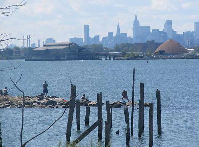 NYC Ferry coming to the Bronx this summer! – CHYANN SAPP
